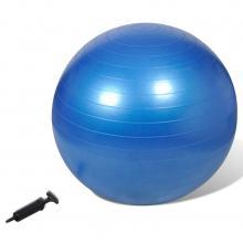 Gymbal 65cm blauw